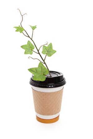 Disposable Coffee Cup and Sprout with white background photo