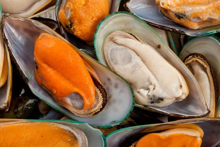 Raw Mussel close up for background