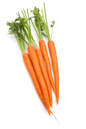 Carrot with white background photo