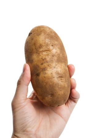 russet potato: Russet Potato with white background