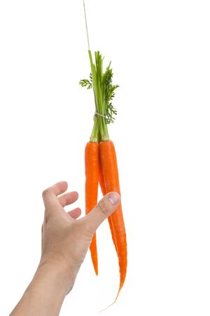 dangling: Dangling carrot with white background Stock Photo