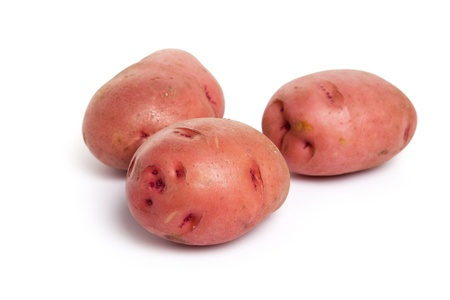 Red Potato with white background photo