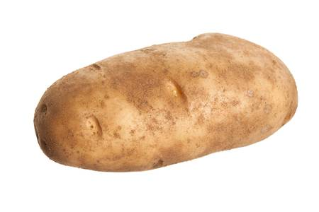 Russet Potato with white background photo