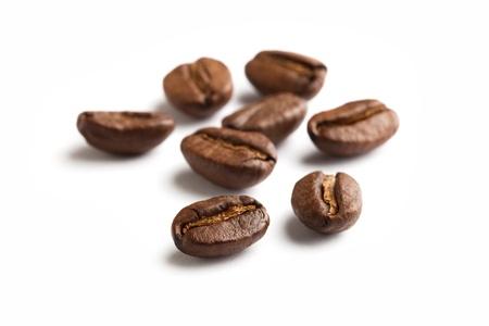 semilla de cafe: Grano de café con fondo blanco