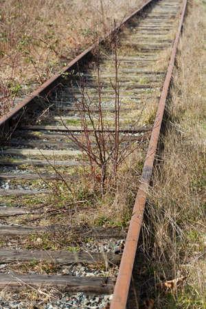 Abandoned Railroad Track close up Stok Fotoğraf - 12753883