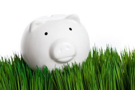 Piggy Bank and green grass Banco de Imagens