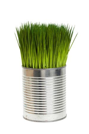 Green grass and metal can, concept of Environmental Conservation