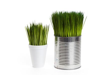 Green grass and metal can, concept of Environmental Conservation Stock Photo - 13184212