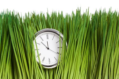 Clock and green grass close up