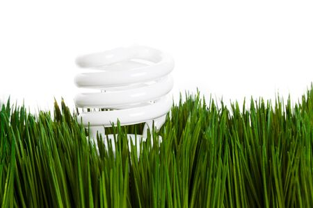 Compact Fluorescent Lightbulb and green grass Stock Photo - 15793897