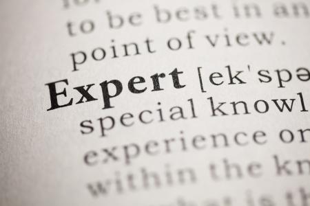 Finto dizionario, la definizione del dizionario della parola Expert. Archivio Fotografico - 22829729