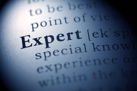 Fake Dictionary, Dictionary definition of the word Expert.