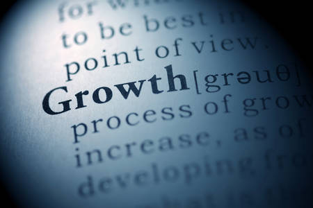 Fake Dictionary, Dictionary definition of the word Growth. Stock Photo - 22898243