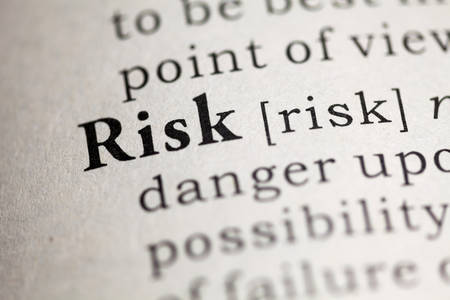 dictionary: Fake Dictionary, Dictionary definition of the word Risk.