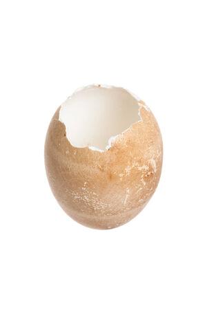 tojáshéj: Törve barna tojáshéj, fehér háttér