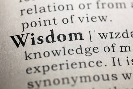 Fake Dictionary, Dictionary definition of the word Wisdom