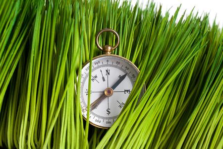 나침반과 푸른 잔디가 닫습니다.