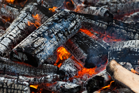 burnt wood: Burning Log and red Flame