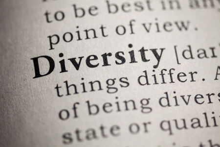 Fake Dictionary, Dictionary definition of the word diversity