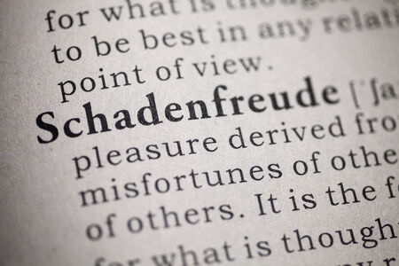 Fake Dictionary, Dictionary definition of the word schadenfreude