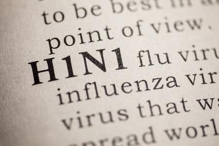 가짜 사전, H1N1 독감 단어 사전 정의