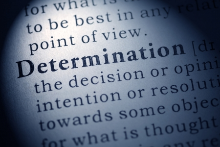 Fake Dictionary, Dictionary definition of determination