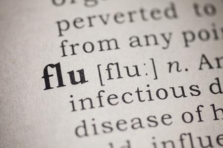 가짜 사전, 단어 독감의 사전 정의