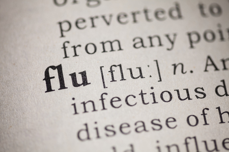 Fake Dictionary, Dictionary definition of the word flu  photo