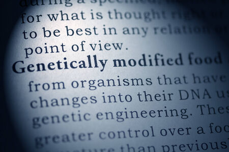 Fake Dictionary, Dictionary definition of Genetically modified food  Stock Photo