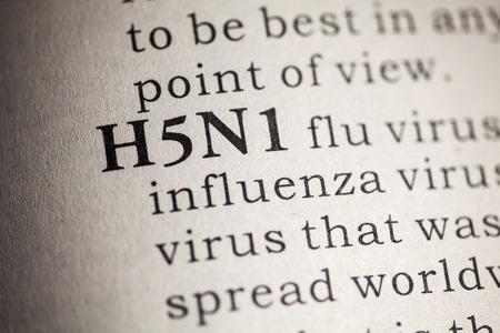가짜 사전, 단어 H5N1 독감의 사전 정의