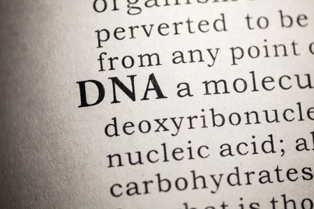 Fake Dictionary, Dictionary definition of DNA