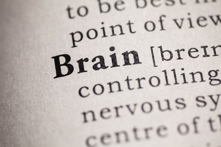 printing out: Fake Dictionary, definition of the word brain