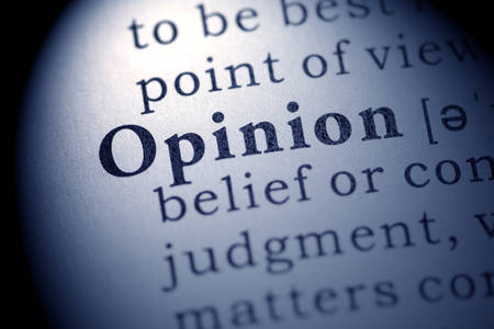 opinion: Fake Dictionary, definition of the word opinion