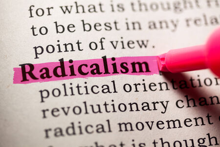 Fake Dictionary, Dictionary definition of the word radicalism