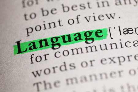 language dictionary: word Language highlighted on green