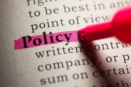 Fake Dictionary, definition of the word policy
