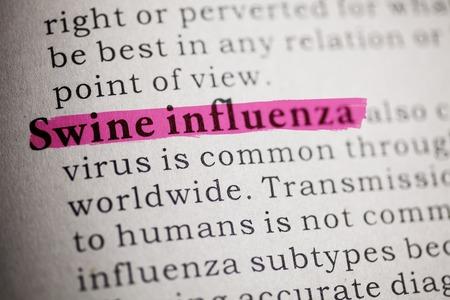 가짜 사전, 돼지 인플루엔자 사전 정의