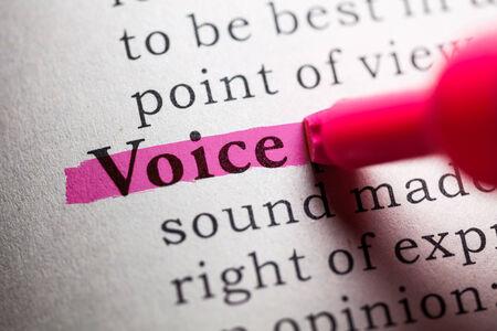 definicion: Diccionario Fake, la definición de la palabra voz