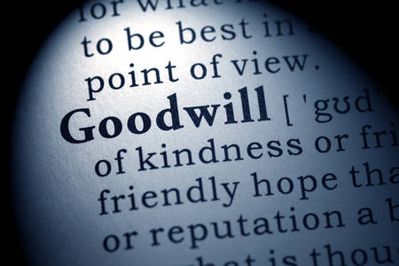goodwill: Fake Dictionary, Dictionary definition of the word goodwill