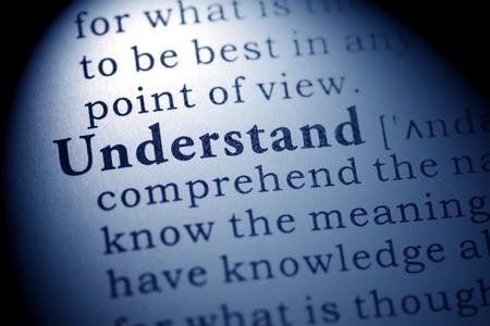 Fake woordenboek, woordenboek definitie van het woord te begrijpen.