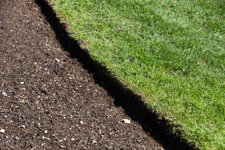 front  or back  yard: green grass and soil, spring gardening