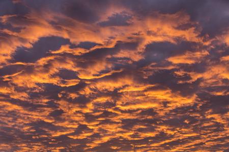 morning glow, intense golden cloudscape.