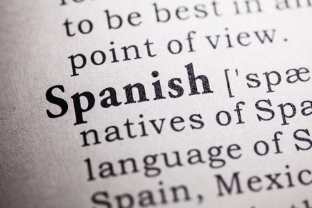 languages: Fake Dictionary, Dictionary definition of the word spanish.