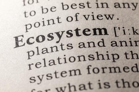 ecosystem: Diccionario falso, Definición del diccionario de la palabra ecosistema