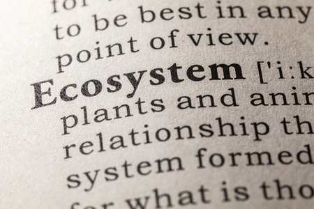 Fake Dictionary, Dictionary definition of the word ecosystem