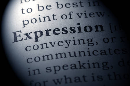 dictionary definition: Fake Dictionary, Dictionary definition of the word expression