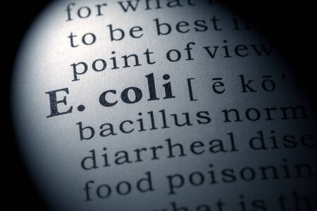e coli: Fake Dictionary, Dictionary definition of the word E. coli