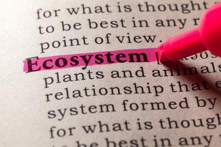 ecosistema: Diccionario falso, Definición del diccionario de la palabra ecosistema