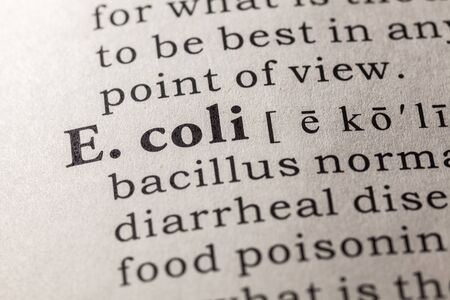 coli: Fake Dictionary, Dictionary definition of the word E. coli
