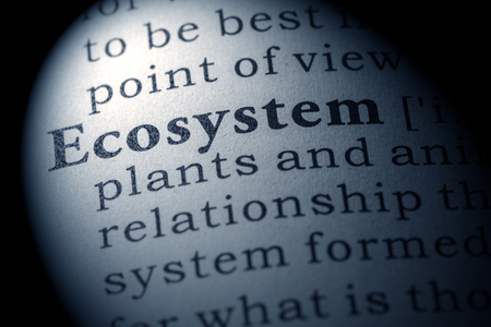 ecosistema: Diccionario falso, Definici�n del diccionario de la palabra ecosistema